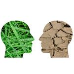 Conférence crises et cerveau